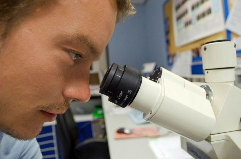 Crean medicamento contra el cáncer, capaz de frenar metástasis y reducir tumores