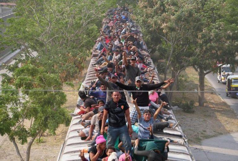 Hondureño recibe severa golpiza, cae del tren y muere en Tamaulipas, México