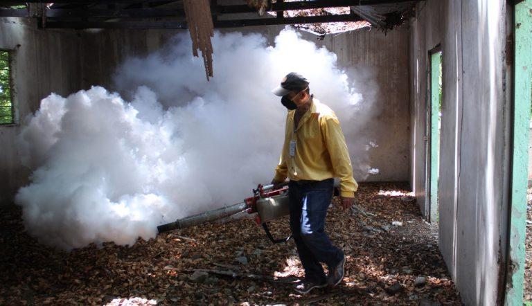 SPS en «guerra» contra el dengue: Limpian y fumigan solares baldíos; multarán a dueños