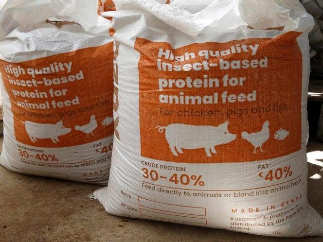 Kenia: reciclan excremento humano para hacer alimentos de alta calidad para animales