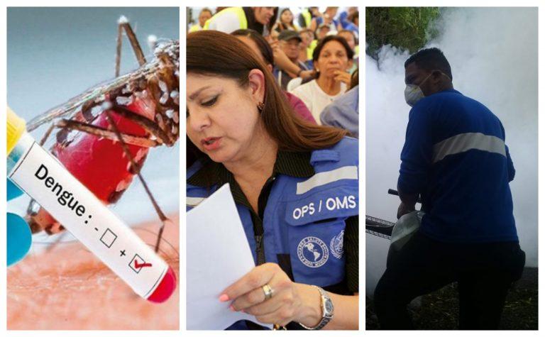 OPS hace un llamado para prevenir muertes por la epidemia del dengue