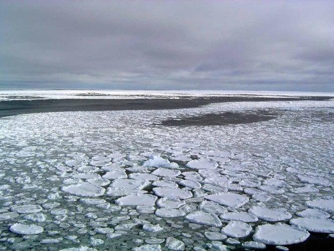 La Antártidasufre el mayor descongelamiento de la historia