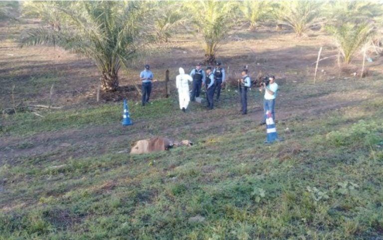 Identifican a hombre asesinado en el municipio de Olanchito, Yoro