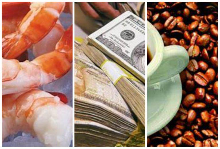 FOSDEH: Remesas superan divisas que dejan el café, la maquila y camarón