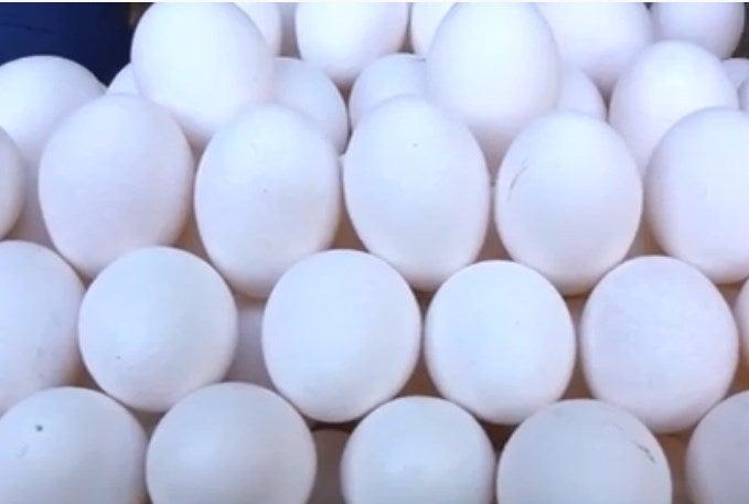 ¿Aumentó el precio de los huevos en SPS? Anavih sin respuestas