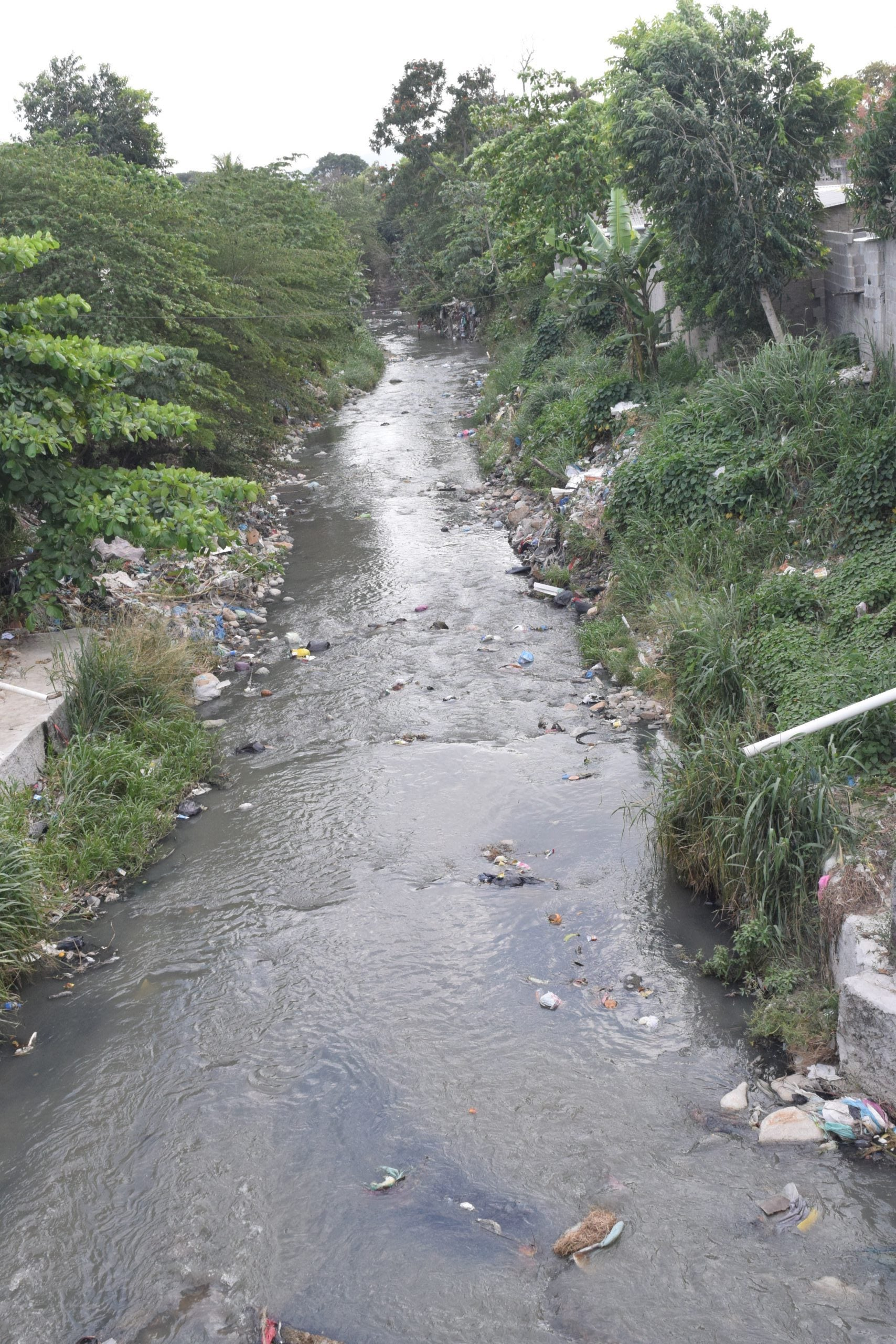 Las imágenes captadas por TIEMPO TV evidencian cómo entre la basura se mezclan las aguas negras y el olor puede percibirse a metros de distancia.