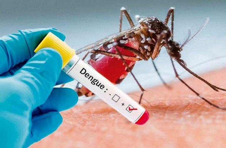 Se agrava epidemia por dengue; Salud confirma dos muertes más