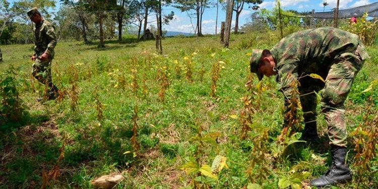 Fondo agrícola: Exigen a las FFAA rendir informe de primeras inversiones