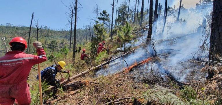 TGU: Incendio de grandes dimensiones consume cerro de Upare