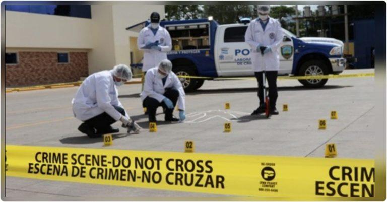 ONV: Cientos de mujeres, transportistas y estudiantes fueron asesinados en 2019