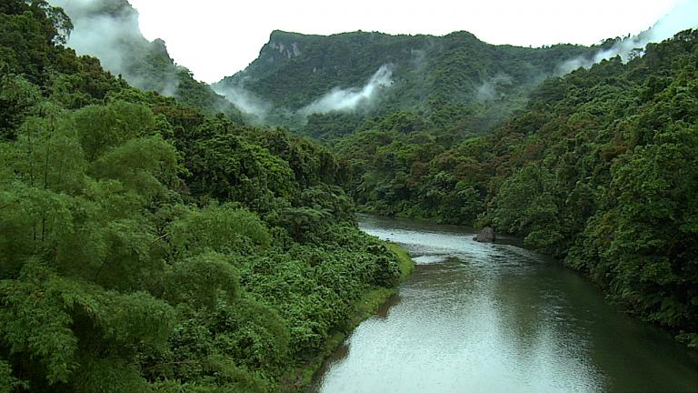 Óscar Oquelí: Hay que destinar presupuesto ante emergencia en el área forestal