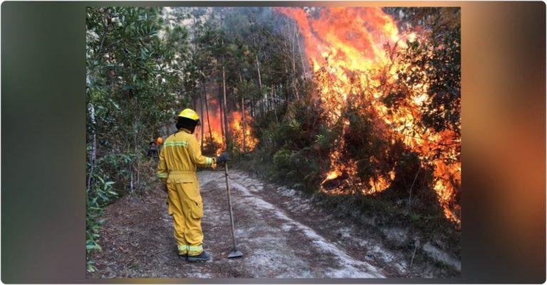 Honduras: Se reportan al menos 65 incendios en los últimos cinco días