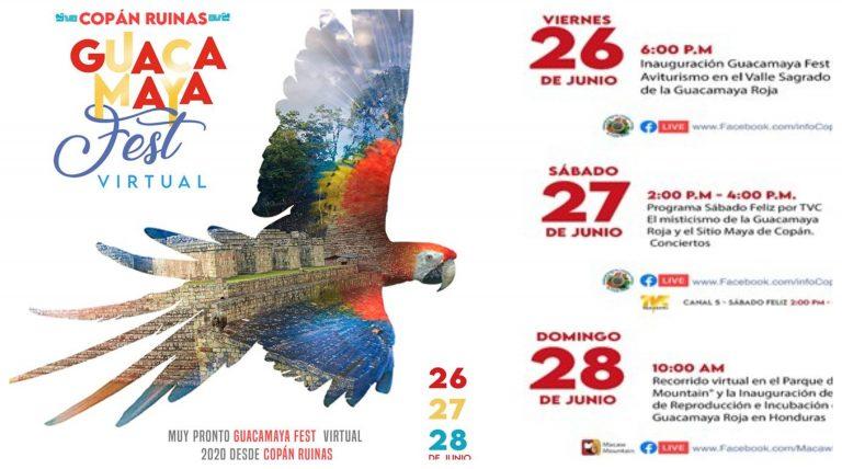 Desde hoy inicia el Guacamaya Fest y usted podrá disfrutarlo de forma virtual