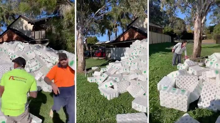 Obreros encuentran una montaña de rollos de papel higiénico en un patio