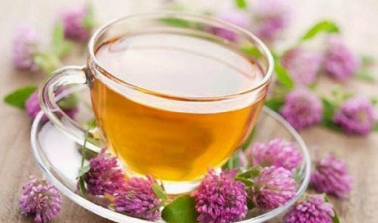 ¿Quieres dormir mejor? Aquí una lista de diez tés que pueden ayudarte