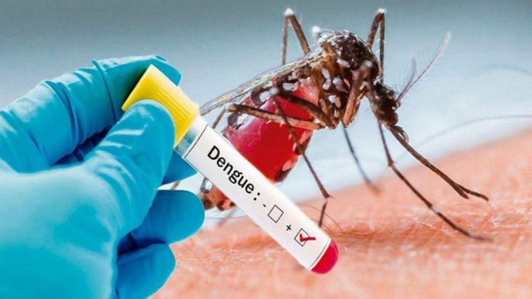 Más de cuatro mil casos de dengue en el Distrito Central, según Salud