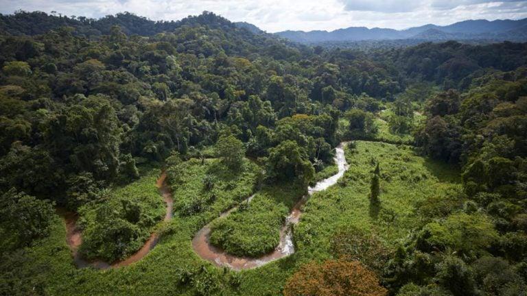 MiAmbiente: Con $65 millones, Honduras desarrollará proyecto contra cambio climático