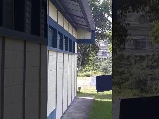 Reportan tiroteo en la cárcel de Támara; ambulancias ingresaron al recinto