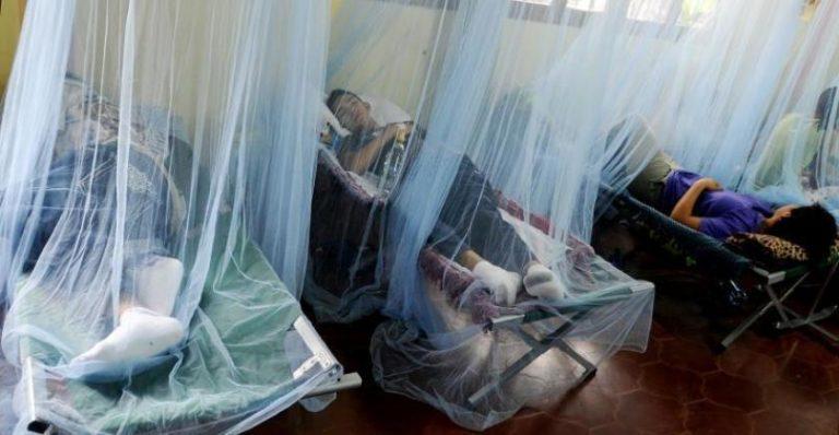 Dirección de Salud advierte: Lluvias revolverán casos de dengue en Cortés