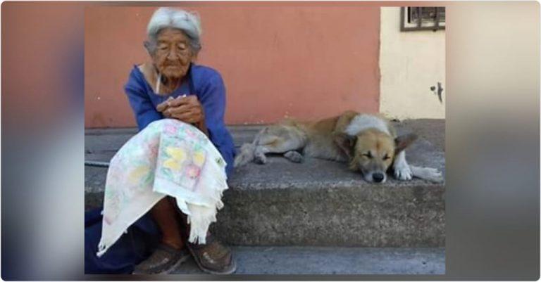 HISTORIA HUMANA | Con 98 años, Elvia trabaja para alimentar animales en la calle