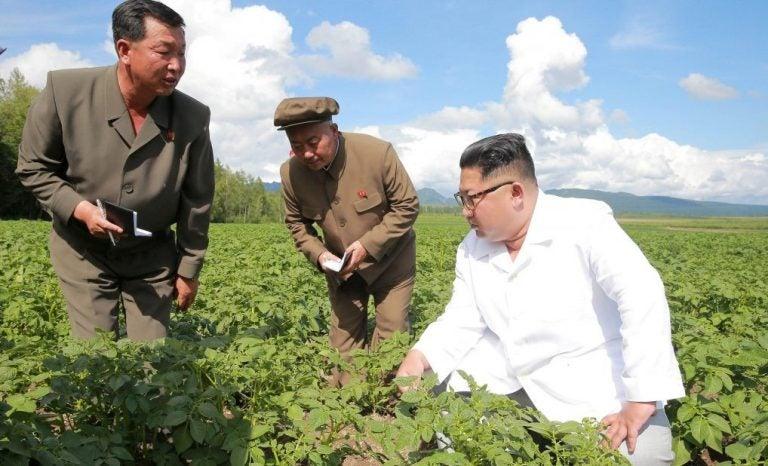 Corea del Norte: Reservas de arroz para militares son usadas para enfrentar hambruna