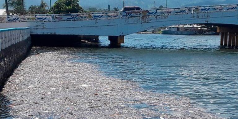 Laguna de Alvarado, sitio Ramsar en peligro por la basura que llega de Guatemala