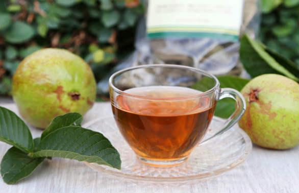 Prevenir enfermedades: entre los beneficios del té de hojas de guayaba