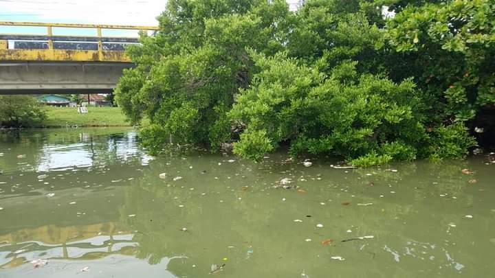La basura flota en el agua.