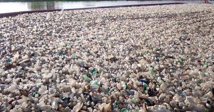 biobardas desechos Guatemala