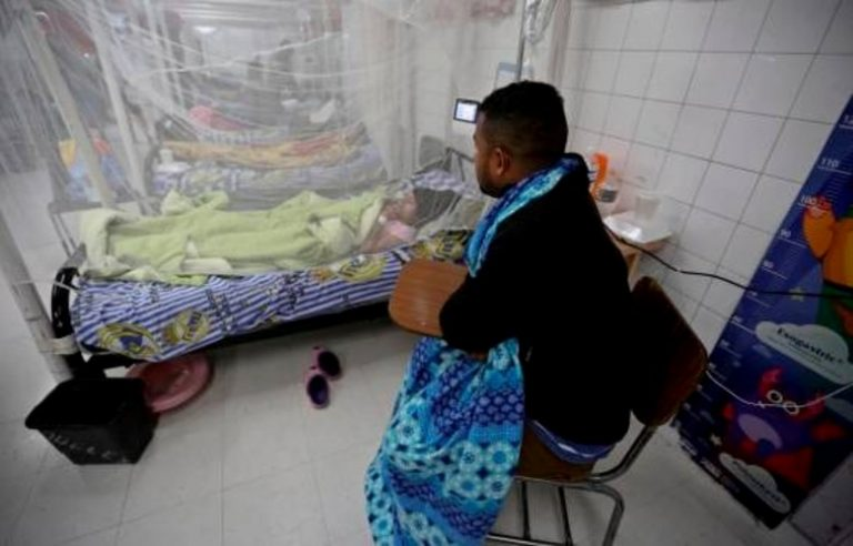 Honduras: En plena pandemia se reportan casi 20 mil casos de dengue