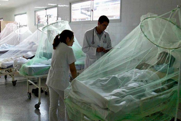 Honduras casos de dengue