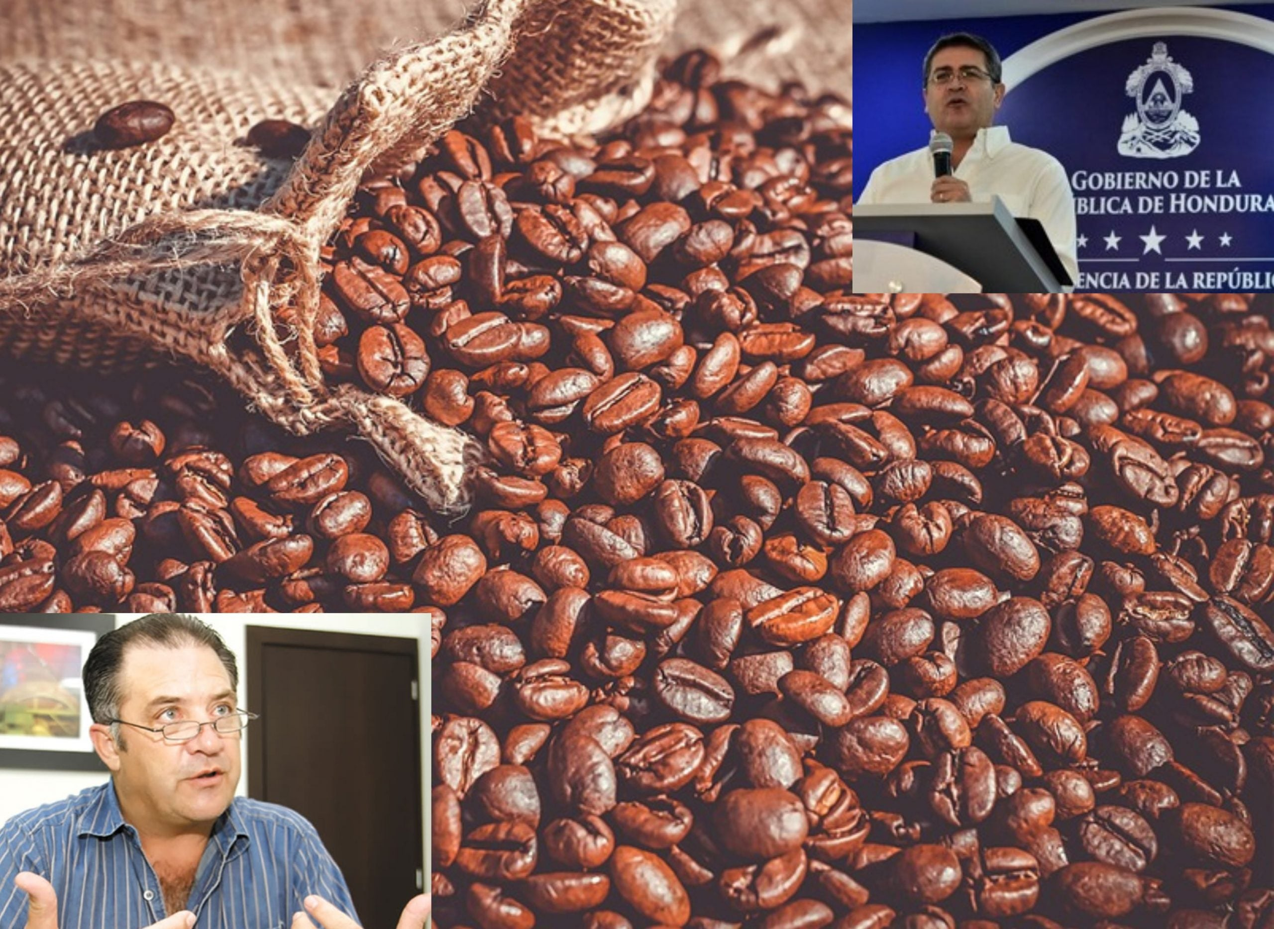 Hallazgo de cocaína en café hondureño