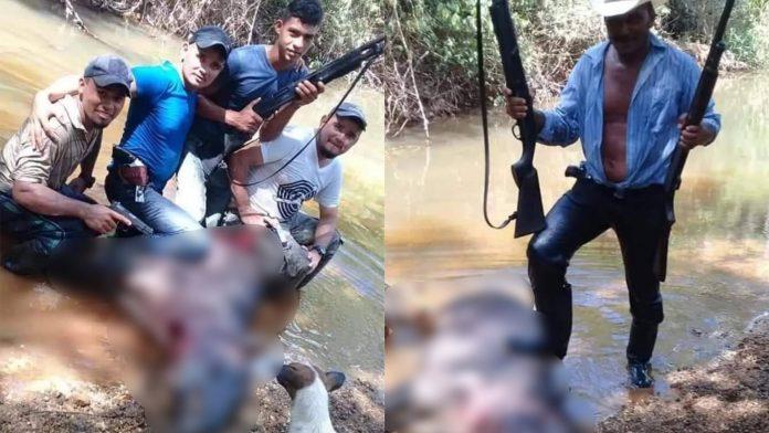 hombres matan a tapir en La Mosquitia