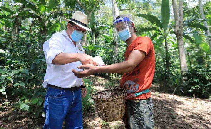 corteros de café Honduras
