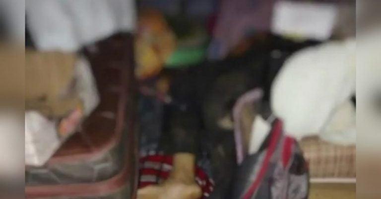 Matan a anciano y su pareja, dueños de pulpería, mientras descansaban