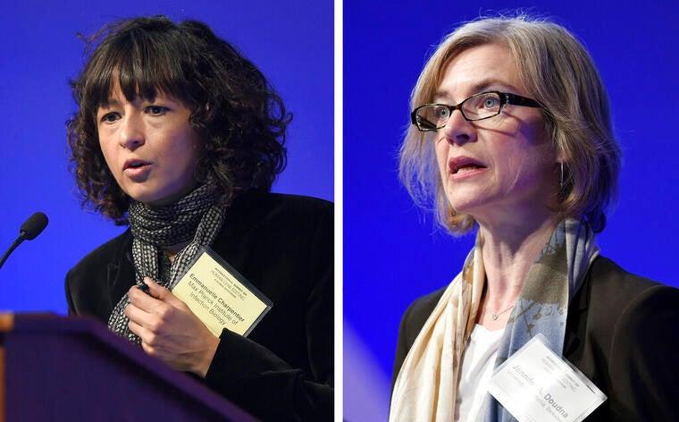 Por método «tijeras moleculares», mujeres ganan Premio Nobel de Química 2020