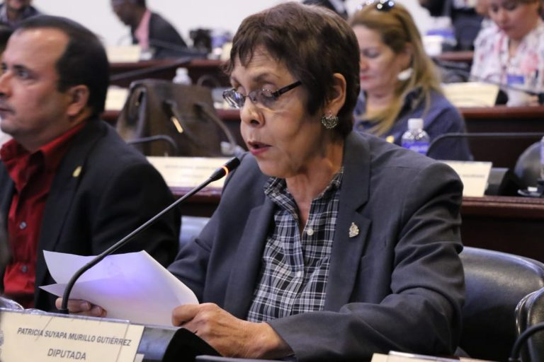 CN: diputada presenta moción para que funcionarios donen su aguinaldo