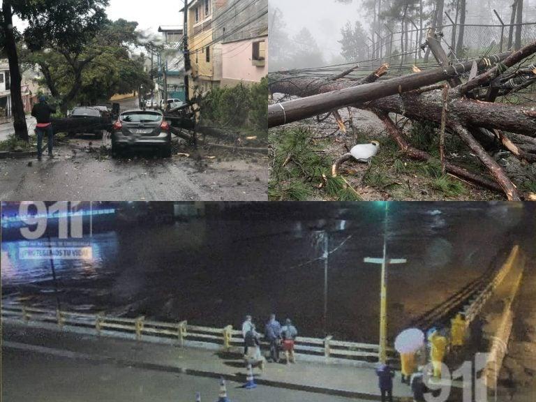 Árboles caídos y derrumbes: Paso de Iota por la capital de Honduras dejó daños