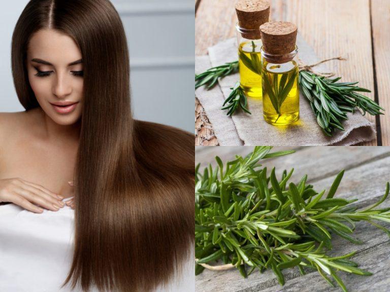 Tratamiento con romero para evitar la caída del cabello y hacerlo crecer brillante