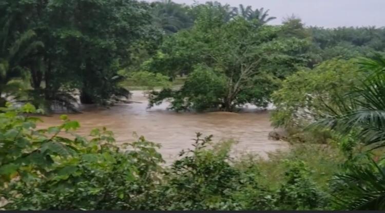 El agua del río se salió de su caudal normal.