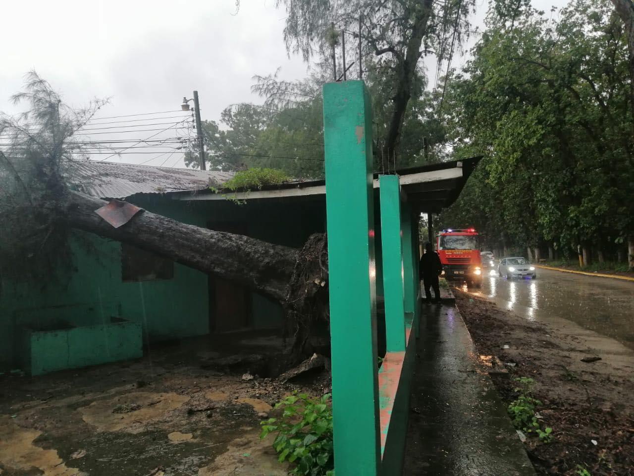 Algunos hogares han sido destruidos.