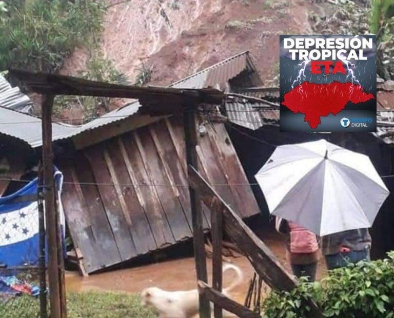 """Titular de COPECO: Más de 360 mil personas afectadas deja """"Eta"""" en Honduras"""