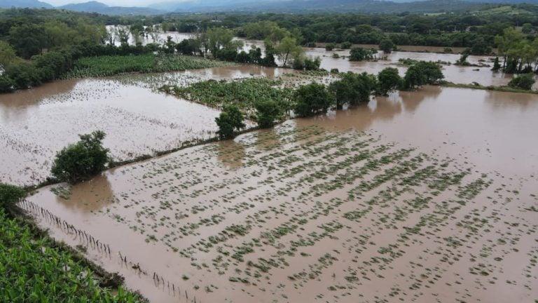 Vía Campesina reporta 100 mil familias del agro afectadas por Eta e Iota