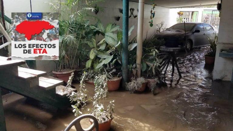 ¡Ejemplar! Empresa de hondureños ayuda en limpieza de casas inundadas