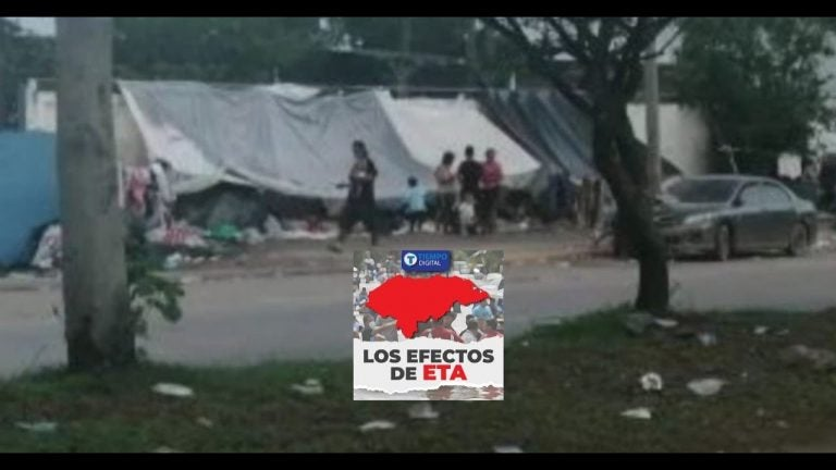 "VIDEO | Tras Eta, damnificados improvisan ""hogares"" con lonas en aceras"