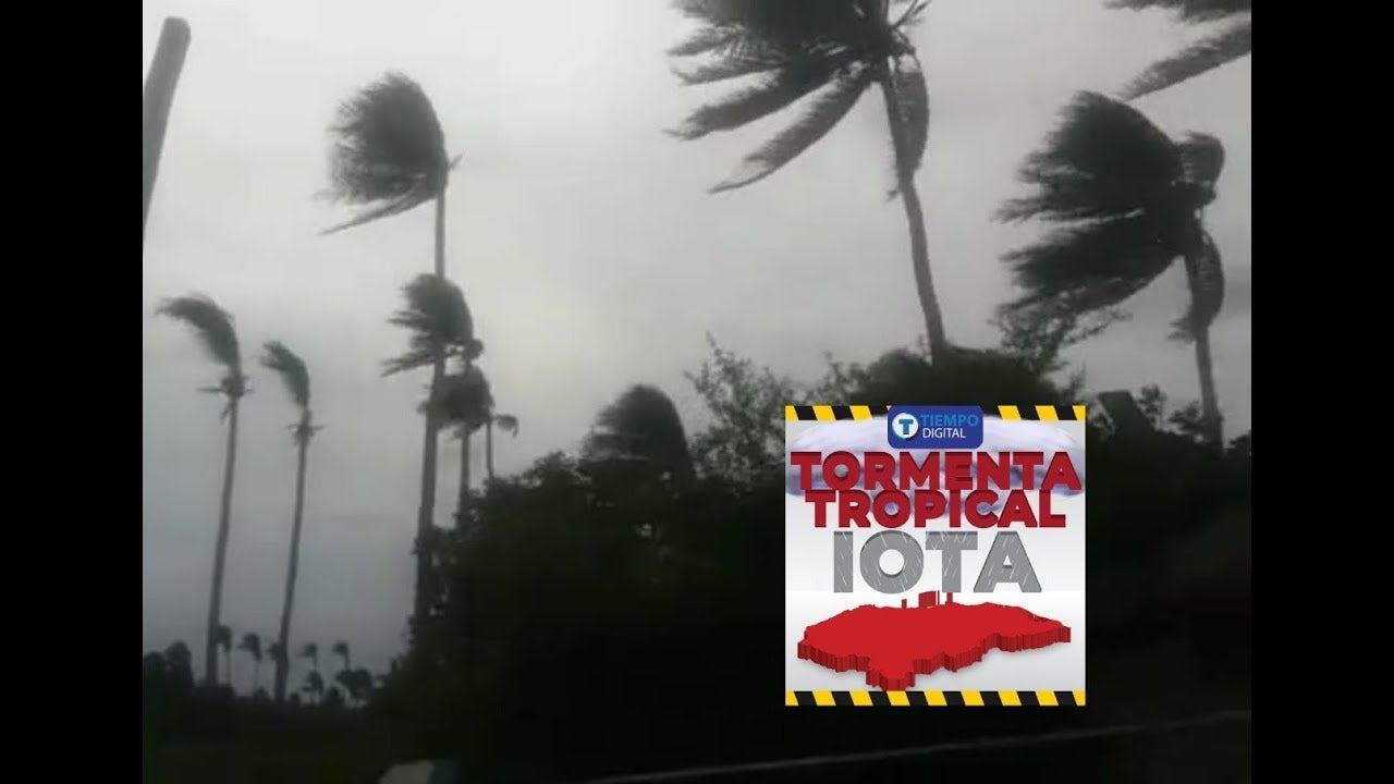 VIDEO| Iota azota con fuertes vientos al municipio de Cedeño, Choluteca