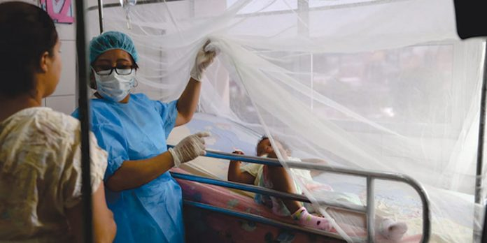 Epidemia dengue Distrito Central