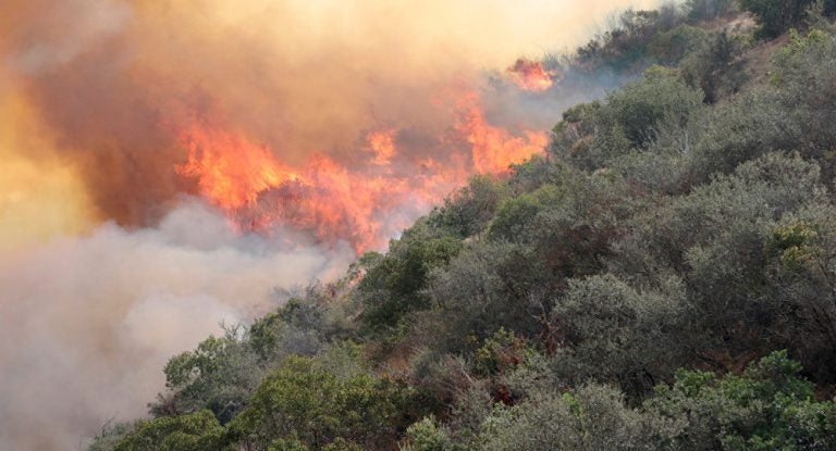 Anuncian campaña para evitar incendios forestales en el 2021