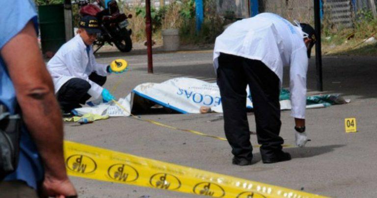 OV-UNAH: 60 % de las muertes violentas son por el crimen organizado