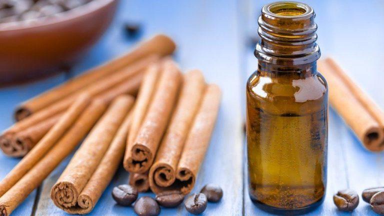 Cuatro beneficios del aceite de canela: ¡aprende a prepararlo en casa!